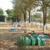 Ремонт школ и детских садов в Григориополе