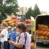 На ярмарке выходного дня жителям Григориополя был предложен широкий ассортимент сельхозпродукции