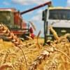 День работника сельского хозяйства и перерабатывающей промышленности ПМР