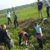 В Григориопольском районе проведена акция «Чистый берег 2019»
