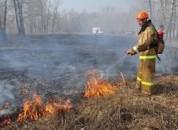 О недопущении cжигания сухой растительности и листьев
