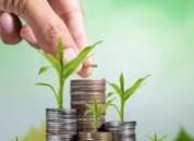 Предоставление бюджетных кредитов К(Ф)Х и юридическим лицам ПМР