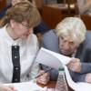 Члены Правительства утвердили паспорт Плана мероприятий по проведению Года экологии и благоустройства